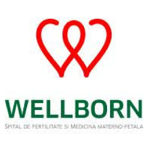 Logo_Wellborn